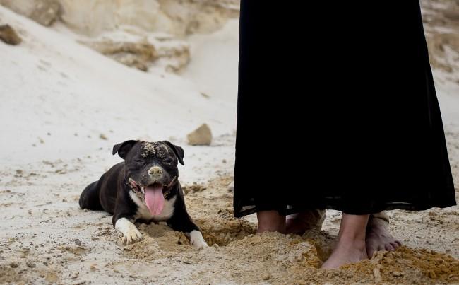 amoureux fiancés plage dark (15)